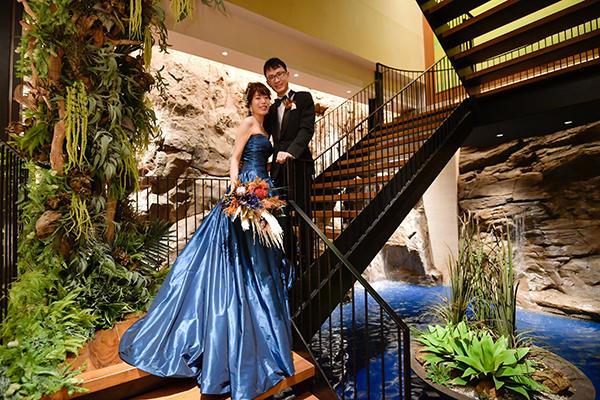 テンダーハウス 人気 ドレス